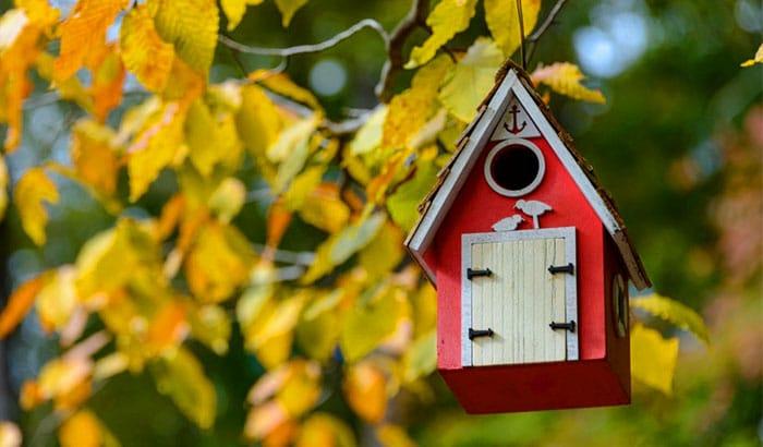 do hummingbirds use birdhouses