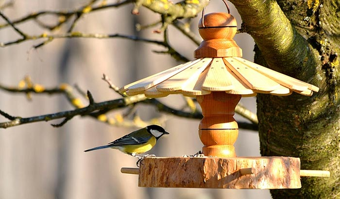 what is a jelly bird feeder