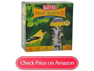 kaytee finch feeders
