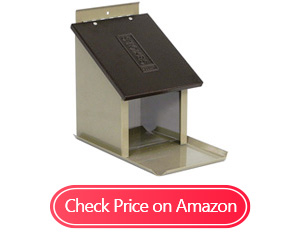 stokes select lunch box squirrel feeders