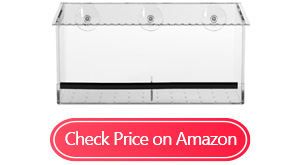 amazon basics window suction bird feeder