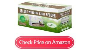 gray bunny deluxe clear window bird feeder