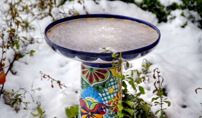 how to keep bird bath from freezing