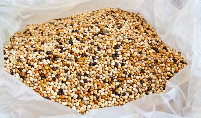 what to do with old bird seed