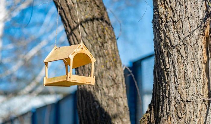 where to hang a bird feeder